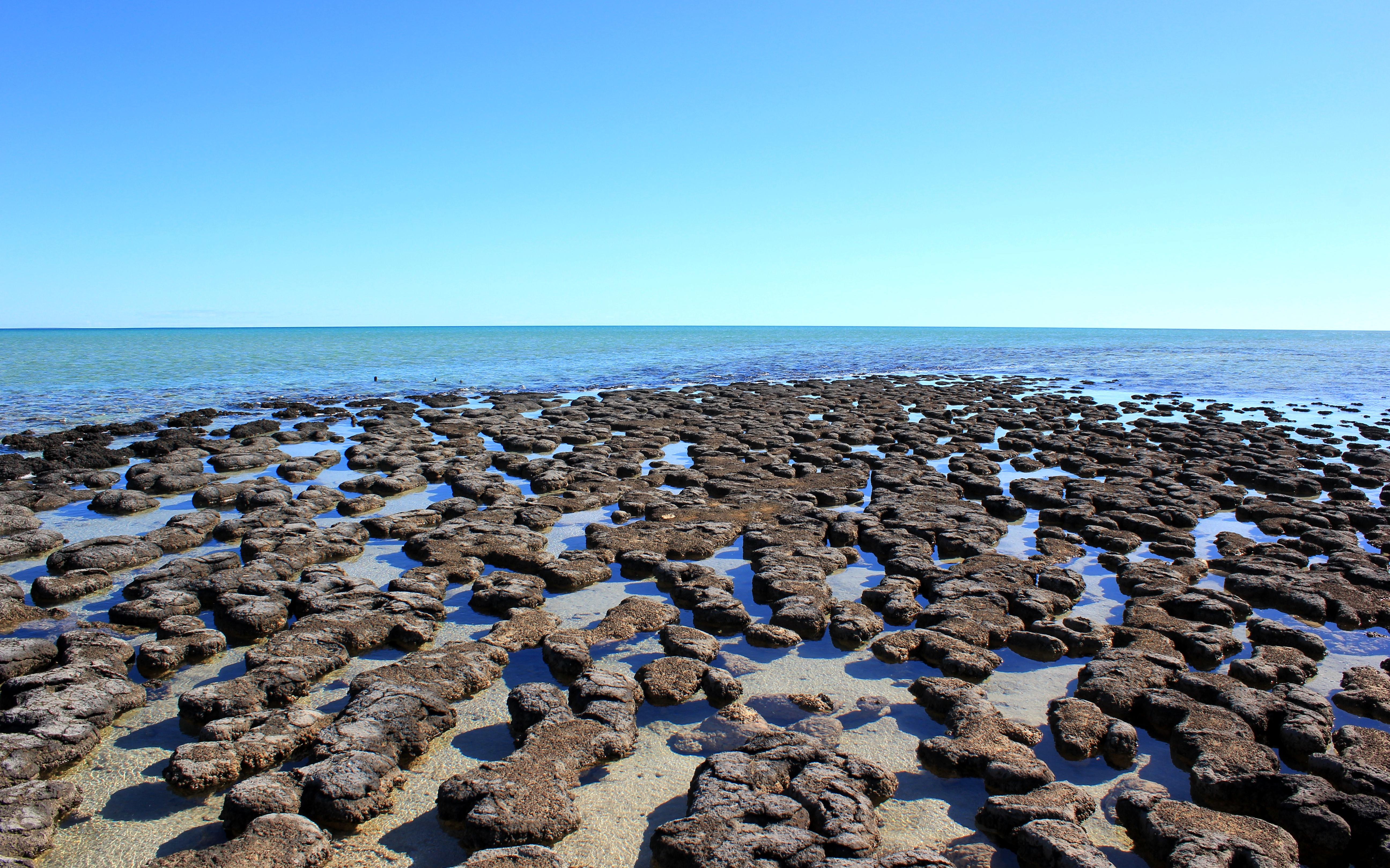 Voyages-et-compagnie.com - Blog voyage | Côte Ouest Australie - Shark Bay
